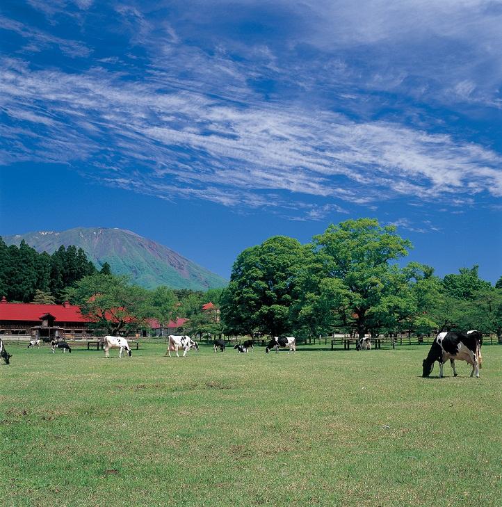 小岩井農場(岩手県雫石町)