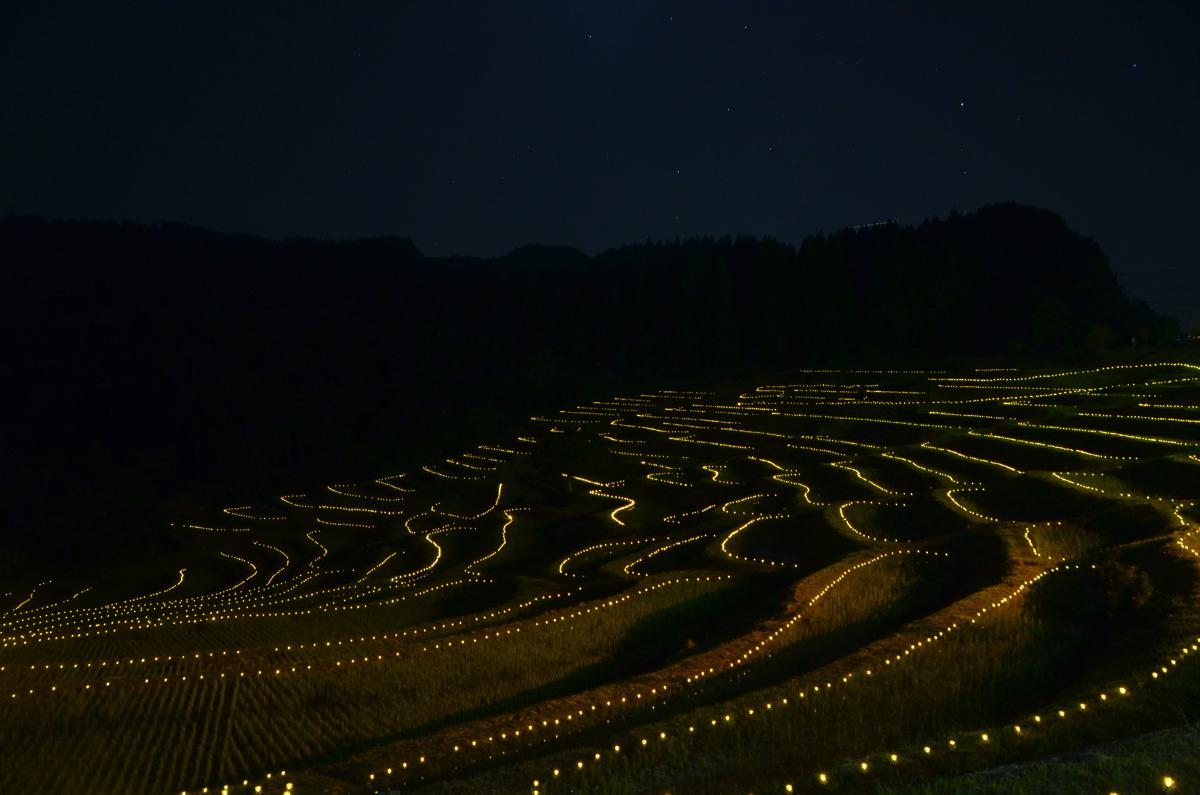 大山千枚田のライトアップ